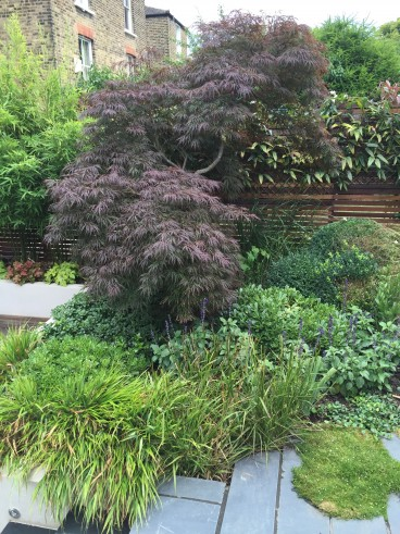 Simple planting helps create a calming atmosphere